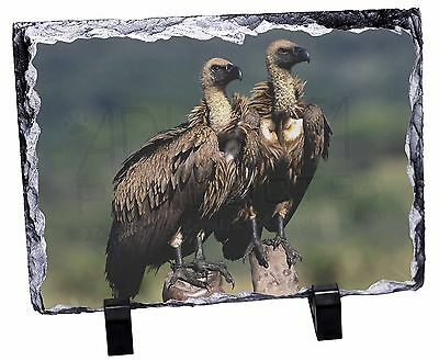 Vultures on Watch Photo Slate Christmas Gift Ornament, AB-92SL
