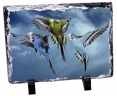 Budgies in Flight Photo Slate Christmas Gift Ornament, AB-96SL