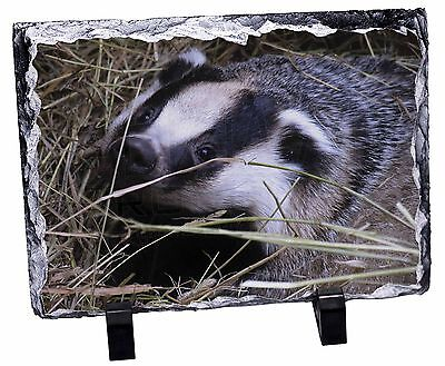 Badger in Straw Photo Slate Christmas Gift Ornament, ABA-1SL