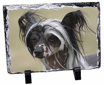 Chinese Crested Dog Photo Slate Christmas Gift Ornament, AD-CHC2SL