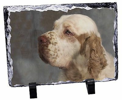 Clumber Spaniel Dog Photo Slate Christmas Gift Ornament, AD-CS1SL