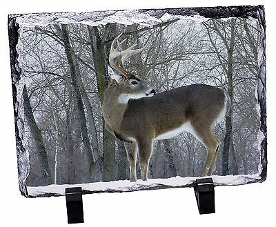 Deer Stag in Snow Photo Slate Christmas Gift Ornament, ADE-1SL