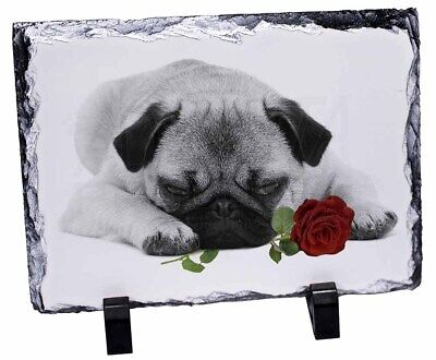 Pug (B+W Photo) with Red Rose Photo Slate Christmas Gift Ornament, AD-P92R2SL