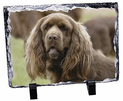 Sussex Spaniel Dog Photo Slate Christmas Gift Ornament, AD-SUS1SL