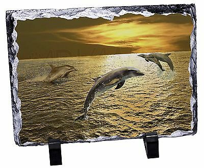 Gold Sea Sunset Dolphins Photo Slate Christmas Gift Ornament, AF-D4SL