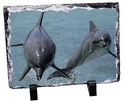 Jumping Dolphins Photo Slate Christmas Gift Ornament, AF-D6SL