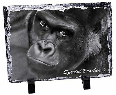 'Special Brother' Gorilla Photo Slate Christmas Gift Ornament, AM-6BRO1SL
