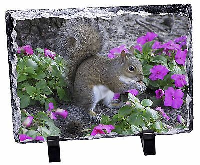 Squirrel by Flowers Photo Slate Christmas Gift Ornament, AS-1SL