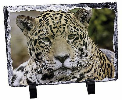 Leopard Photo Slate Christmas Gift Ornament, AT-38SL