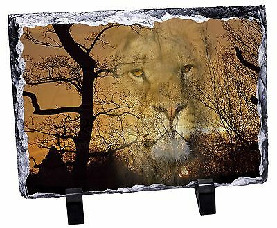 Lion Spirit Watch Photo Slate Christmas Gift Ornament, AT-42SL