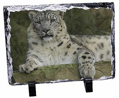 Beautiful Snow Leopard Photo Slate Christmas Gift Ornament, AT-47SL