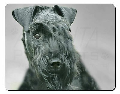 Kerry Blue Terrier Dog Computer Mouse Mat Christmas Gift Idea, AD-KB1M