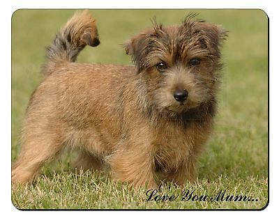 Norfolk Norwich Terrier 'Love You Mum' Computer Mouse Mat Christmas , AD-NT1lymM