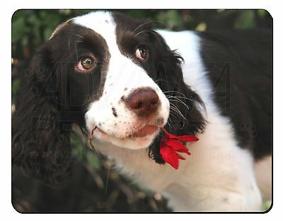 Springer Spaniel Dog and Flower Computer Mouse Mat Christmas Gift Idea, AD-SS74M