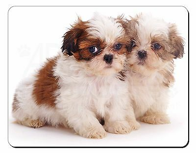 AD-SZ10M /'Special Sister/' Shih-Tzu Dogs Computer Mouse Mat Christmas Gift Idea