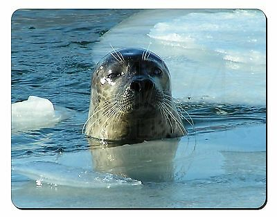 Sea Lion in Ice Water Computer Mouse Mat Christmas Gift Idea, AF-S2M