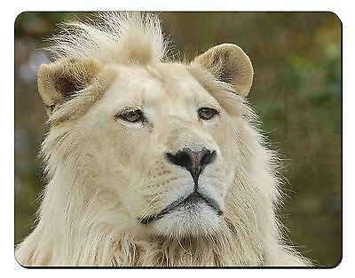 Gorgeous White Lion Computer Mouse Mat Christmas Gift Idea AT-44M