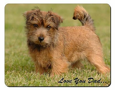 Norwich/Norfolk Terrier 'Love You Dad' Computer Mouse Mat Christmas Gif, DAD-80M