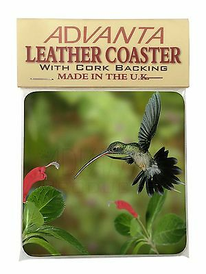Green Hermit Humming Bird Single Leather Photo Coaster Animal Breed Gif, AB-95SC