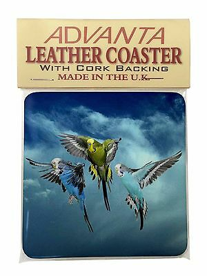 Budgies in Flight Single Leather Photo Coaster Animal Breed Gift, AB-96SC