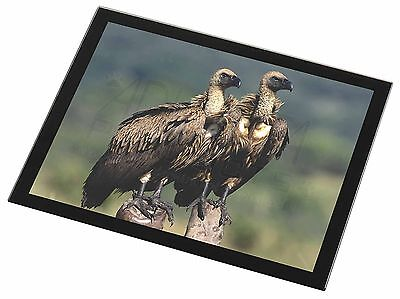 Vultures on Watch Black Rim Glass Placemat Animal Table Gift, AB-92GP