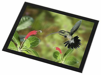 Green Hermit Humming Bird Black Rim Glass Placemat Animal Table Gift, AB-95GP