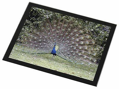 Colourful Peacock Black Rim Glass Placemat Animal Table Gift, AB-PE76GP