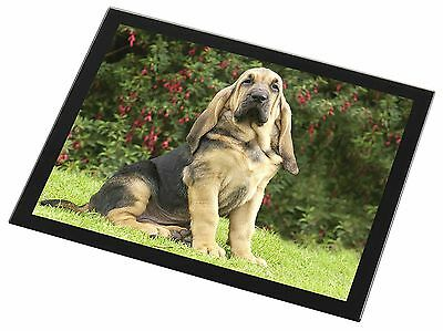Bloodhound Dog Black Rim Glass Placemat Animal Table Gift, AD-BL1GP