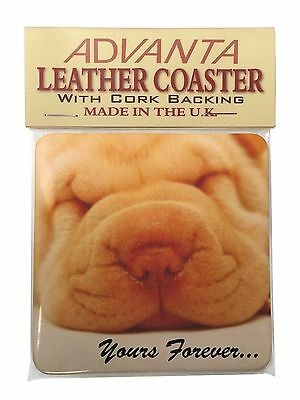 Shar-Pei Puppy 'Yours Forever' Single Leather Photo Coaster Animal Bre, AD-90ySC