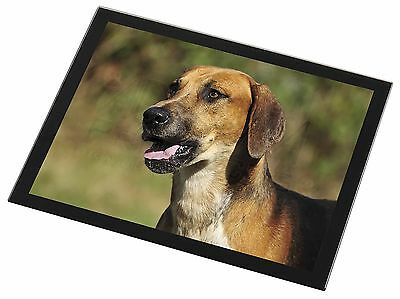 Foxhound Dog Black Rim Glass Placemat Animal Table Gift, AD-FH1GP