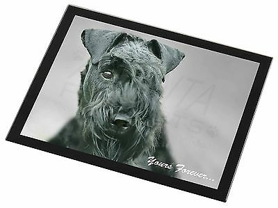 Kerry Blue Terrier 'Yours Forever' Black Rim Glass Placemat Animal Ta, AD-KB1yGP