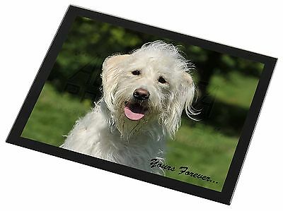 White Labradoodle 'Yours Forever' Black Rim Glass Placemat Animal Tab, AD-LD3yGP