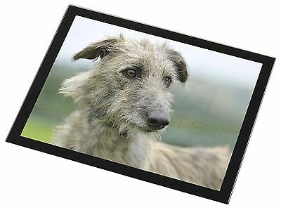 Rough Coated Lurcher Black Rim Glass Placemat Animal Table Gift, AD-LU6GP
