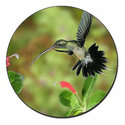Green Hermit Humming Bird Fridge Magnet Stocking Filler Christmas Gift, AB-95FM