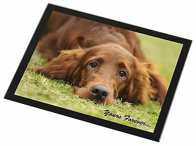 Red Setter Dog 'Yours Forever' Black Rim Glass Placemat Animal Table , AD-RS2yGP
