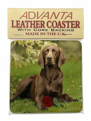 German Shorthaired Pointer with Red Rose Single Leather Photo Coaste, AD-GSP1RSC