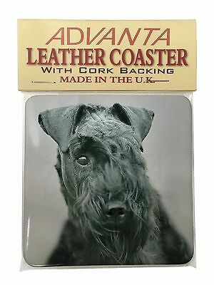 Kerry Blue Terrier Dog Single Leather Photo Coaster Animal Breed Gift, AD-KB1SC