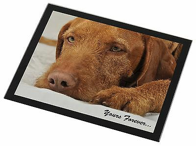 Hungarian Vizsla 'Yours Forever' Black Rim Glass Placemat Animal Table, AD-V3yGP