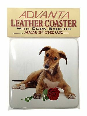 Lurcher Dog with Red Rose Single Leather Photo Coaster Animal Breed G, AD-LU2RSC