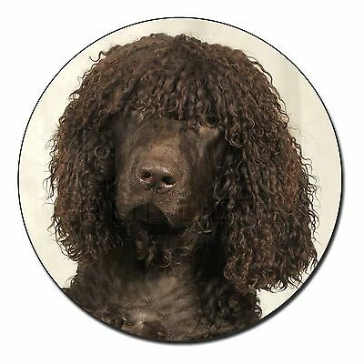 Irish Water Spaniel Dog Fridge Magnet Stocking Filler Christmas Gift, AD-IWSFM
