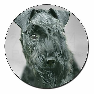 AD-KB1yK Kerry Blue Terrier /'Yours Forever/' Photo Keyring Animal Gift