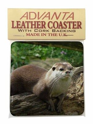 River Otter Single Leather Photo Coaster Animal Breed Gift, AO-2SC