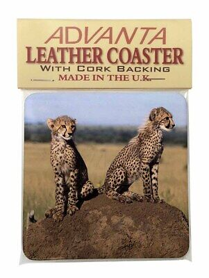 Cheetahs on Watch Single Leather Photo Coaster Animal Breed Gift, AT-25SC