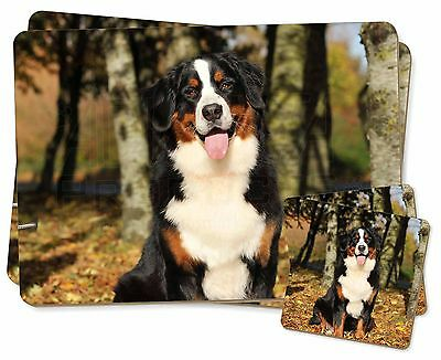 Bernese Mountain Dog Twin 2x Placemats+2x Coasters Set in Gift Box, AD-BER7PC