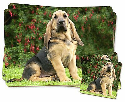 Bloodhound Dog Twin 2x Placemats+2x Coasters Set in Gift Box, AD-BL1PC