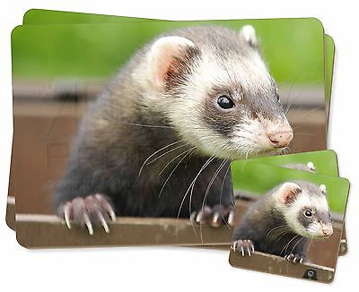 Ferret Print Twin 2x Placemats+2x Coasters Set in Gift Box, FER-2PC