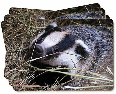 Badger in Straw Picture Placemats in Gift Box, ABA-1P
