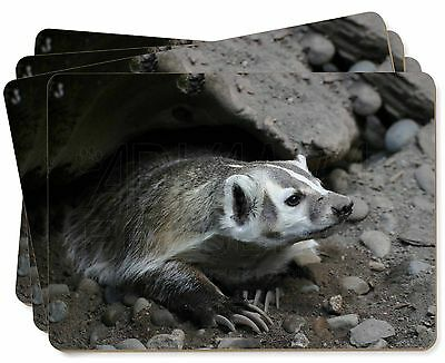 Badger on Watch Picture Placemats in Gift Box, ABA-2P