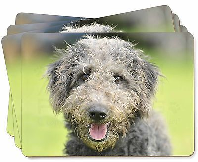 Beddlington Terrier Dog Picture Placemats in Gift Box, AD-BED1P
