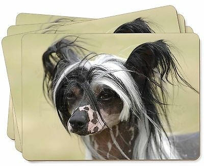 Chinese Crested Dog Picture Placemats in Gift Box, AD-CHC2P